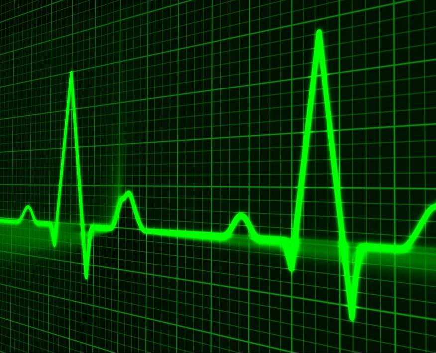 heart rate and pulse rate ians20190310170944_l